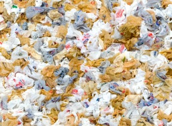 60000 plastic bags are thrown away every day causing big pollution of landscape, water ways, rivers, endangering ocean animals and native wildlife. Blossom Nature Conservation fights in the Texas Hill Country fights plastic pollution with education and information