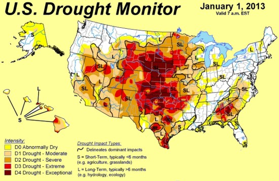 01/01/2013 environmental news: extreme drought, some call it exceptional drought destroys Nature in the southern US States  endangering humans, wildlife, trees plants, flora, fauna