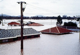 Cutting trees, missing Nature conservation: Australia's flood destroyed the livelihood of many, air pollution causing climate change leading to violent floods. Nature conservation: The only affordable answer to the reduction of biodiversity, to melting glaciers, floods by fast melting snow, ice