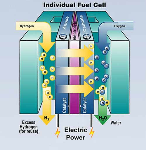 Conservation education online: fuel cells are like a generator running on hydrogen, or natural gas, or methane gas. There a different fuel cells in many laboratories with different fuels