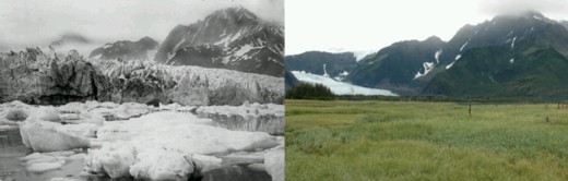 climate change is real. Look at these two photos. One taken 1917 at an Alaska glacier. The right photo was taken on the same place, just 90 years later, the glacier hats retreated by several miles, all the ice melted