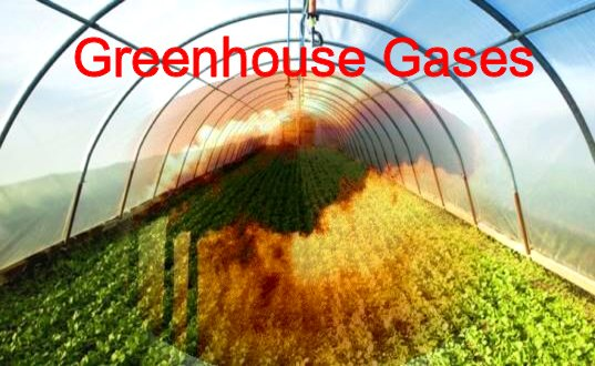 Conservation education online greenhouse gases: We can�t explain observed changes unless we factor humans into the equation. Global and Continental Temperature Change. Conservation education to protect our life: As sun light is caught in a greenhouse, so greenhouse gases will stay in a greenhouse. Earths atmosphere acts like the walls of a greenhouse