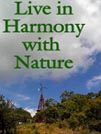 Live in Harmony - use mulch to fight erosion, use renewable energy to lower your footprint