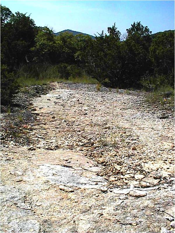 BSB education online: Conservation of soil: This is the look of many habitats in the Texas Hill Country, when we bought it - no mulch - high erosion - no soil