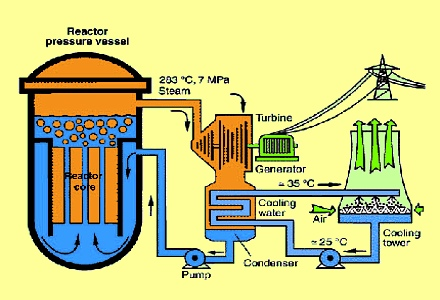 Conservation education on nuclear power plants: All nuclear reactors are devices designed to maintain a chain reaction producing a steady flow of neutrons generated by the fission of heavy nuclei