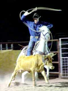 Bandera Rodeo - horse and calf, cowboy training, wild west experience