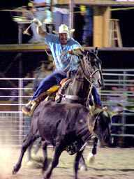 Conservation of the land was the main task of the farmers and ranchers. Bandera County Rodeo roper, cattle and cowboys, western style