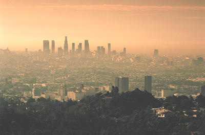 smog over Los Angeles is hurting humans,  nature, animals. Smog is a special air pollution, making humans and animals sick and unhealthy