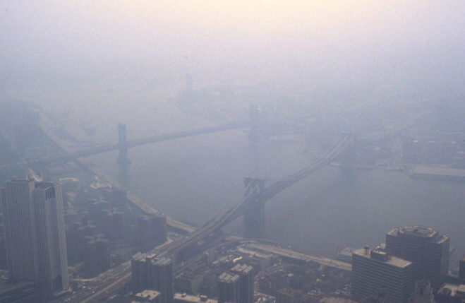 Conservation education online greenhouse gas reduction with cap and trade laws: smog in New York is often a health problem for humans and animals