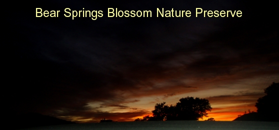 BSB Environmental education online: sunset over Bear Springs Blossom Nature Preserve. Sunsets have different colors. Did you know that air pollution is changing colors of a sunset, because the air reflects light differently when pollution particles are abundant?