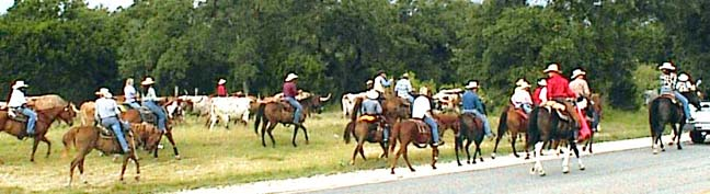 Western Trail 2004 going north through Bandera County